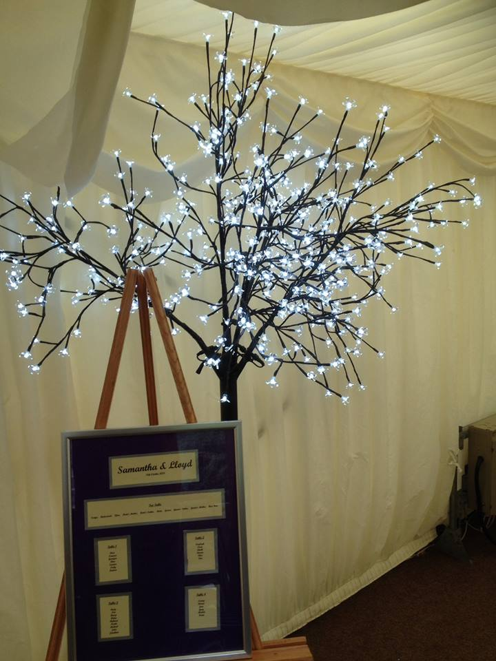 Blossom Trees - LED Style